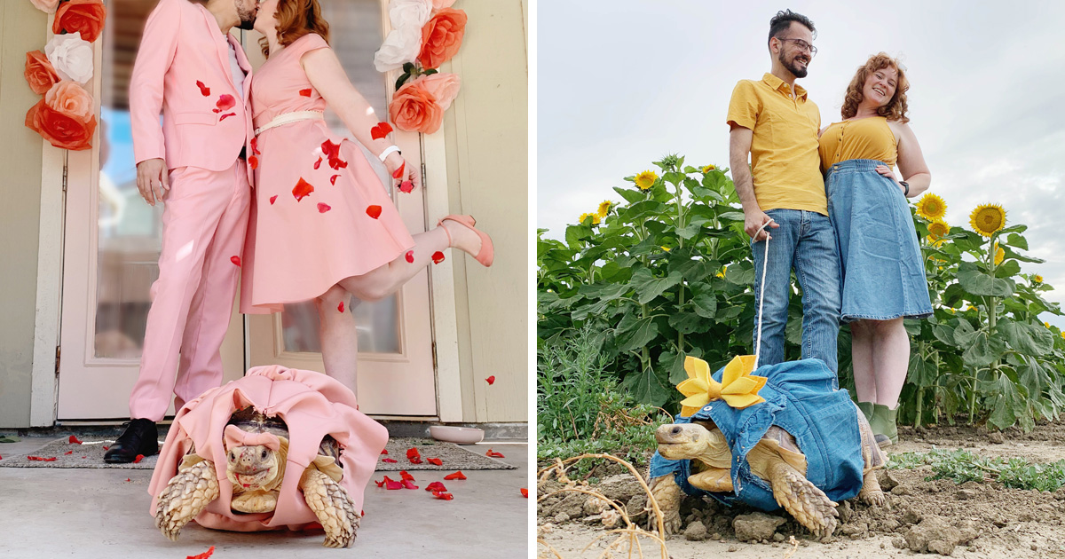 Ce couple assortit ses tenues avec celles de leur tortue de compagnie