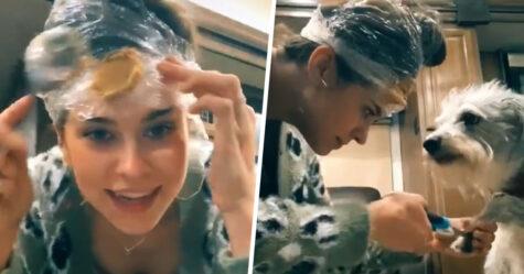 Cette femme a partagé une astuce géniale avec du beurre d'arachide qui lui permet de couper les griffes de son chien sans tracas