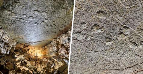 Des empreintes de dinosaures géantes découvertes sur le plafond d'une grotte en France
