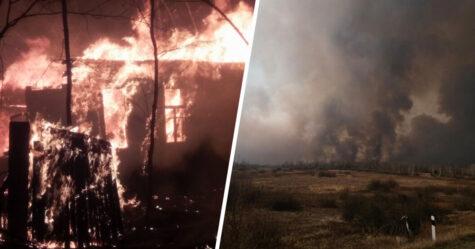 Des feux de forêt à Tchernobyl brûlent dangereusement près du réacteur nucléaire