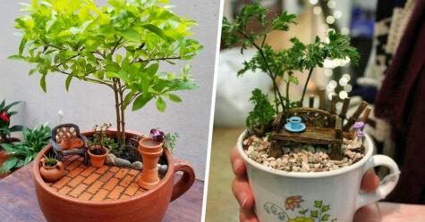 Ces jardins dans des tasses de thé semblent tout droit sortis d'un conte de fées et voici les 22 meilleurs exemples