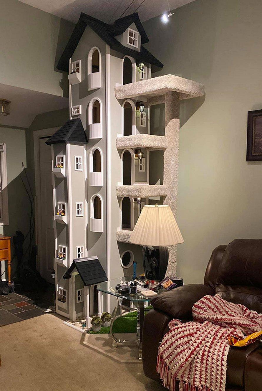 Un homme a construit deux tours pour ses chats et il y a tellement de gens qui les veulent qu'il va commencer à vendre les plans de construction