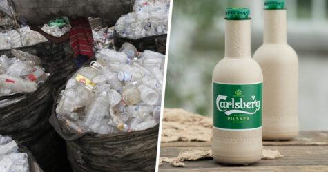 Coca-Cola et Carlsberg présentent des bouteilles à base de plantes qui se dégradent en 1 an
