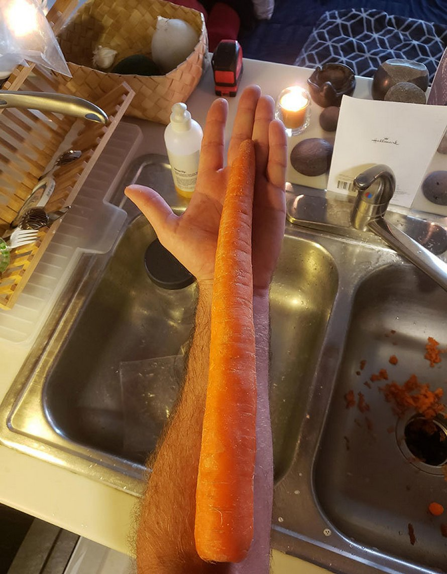Des gens ont commandé de la nourriture de l'épicerie pendant le confinement et ont reçu ces 22 aliments monstres