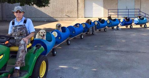 Un homme de 80 ans construit un train pour permettre à des chiens errants secourus de partir à l'aventure