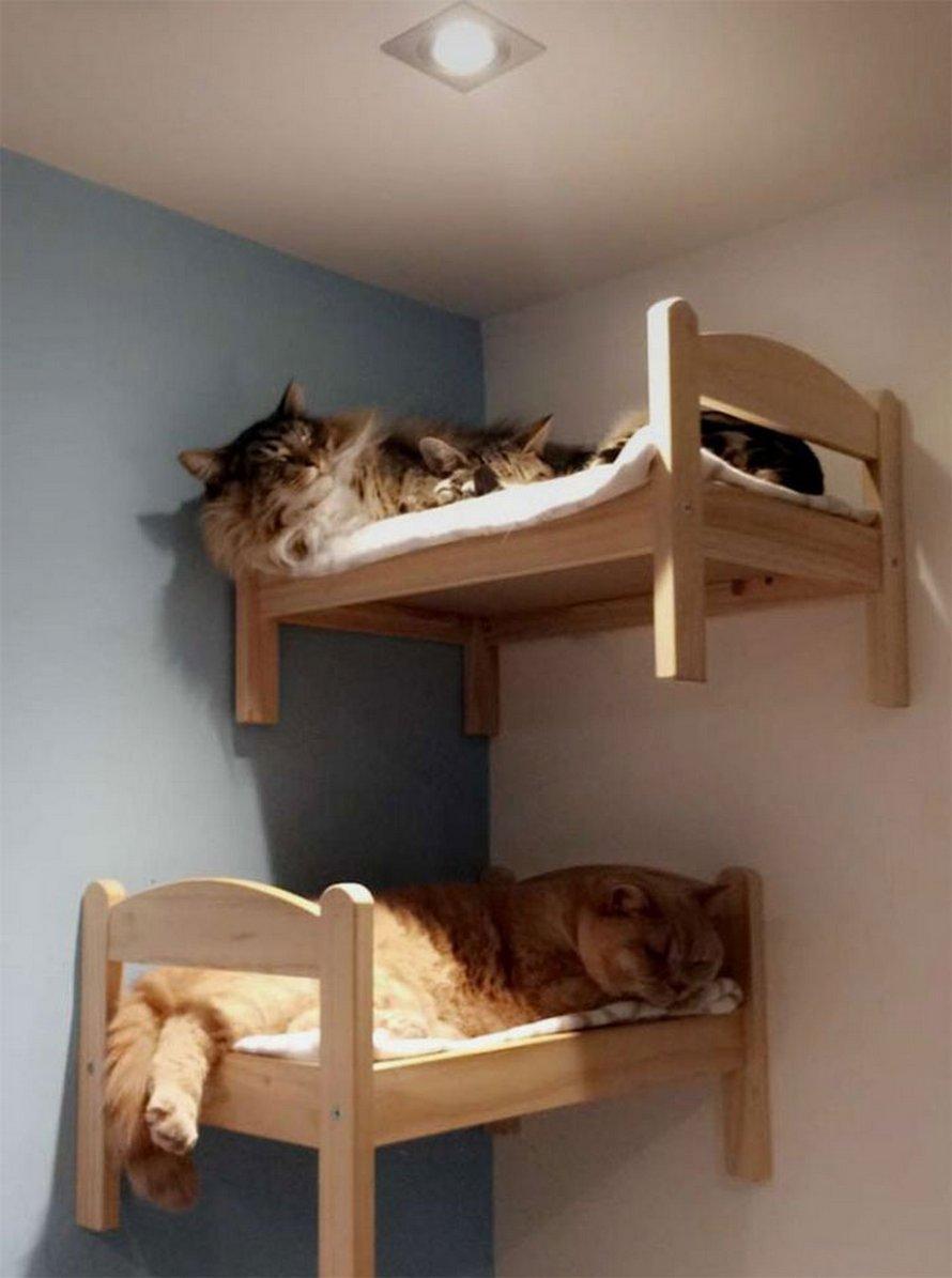 IKEA vend de petits lits pour les poupées d'enfants, mais ces 30 personnes les ont achetés pour leurs chats
