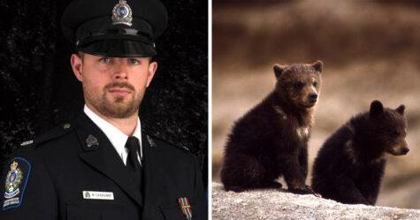 Un agent de conservation licencié pour avoir refusé de tuer des oursons remporte une bataille juridique pour blanchir son nom