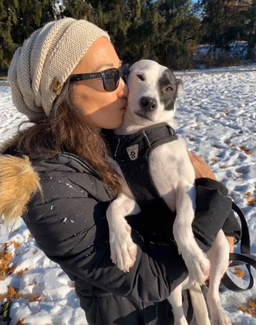 Une femme qui a peur des chiens adopte un chien qui a peur des gens et ils développent une amitié réconfortante