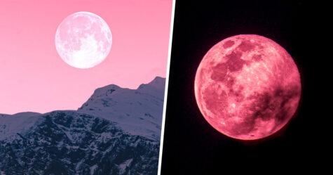 La magnifique Lune des Fraises sera visible partout dans le monde ce soir