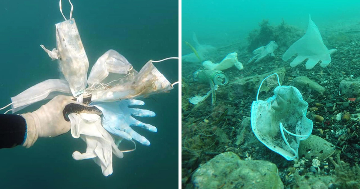 Les masques et les gants jetables polluent désormais les océans