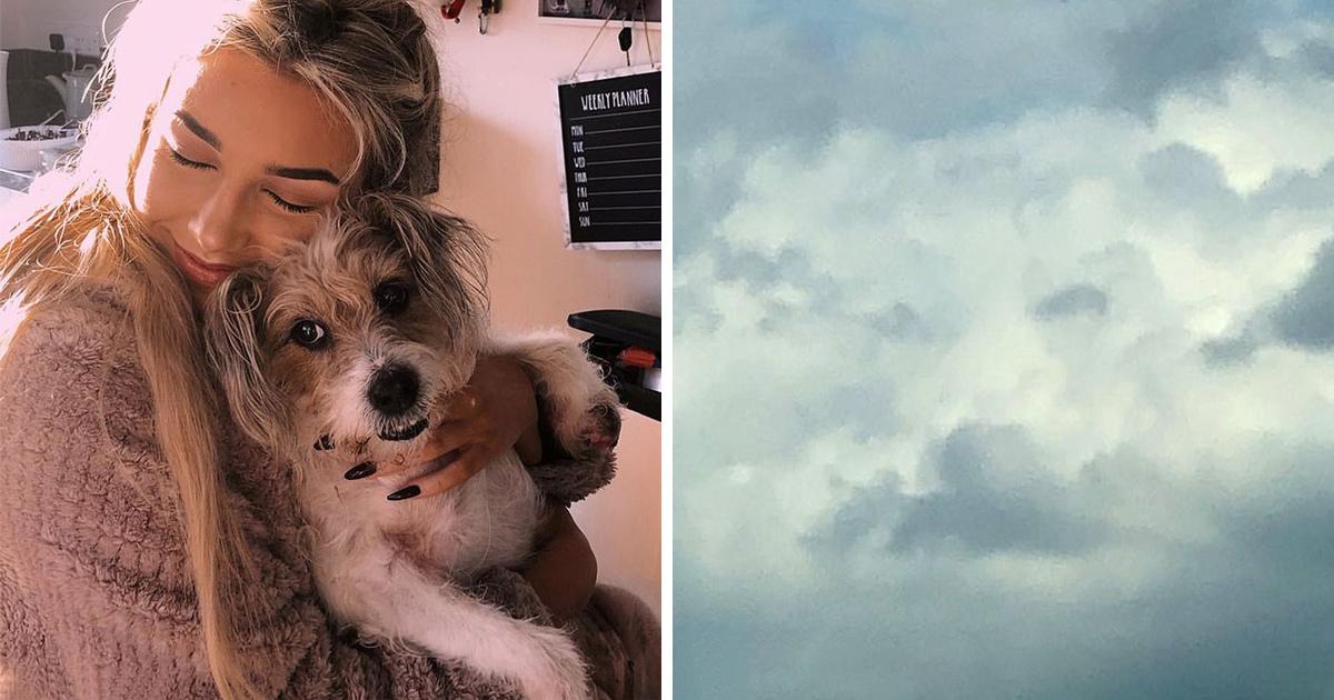 Une femme aperçoit sa «chienne» dans le ciel quelques heures après sa mort et d'autres partagent des photos et des histoires similaires