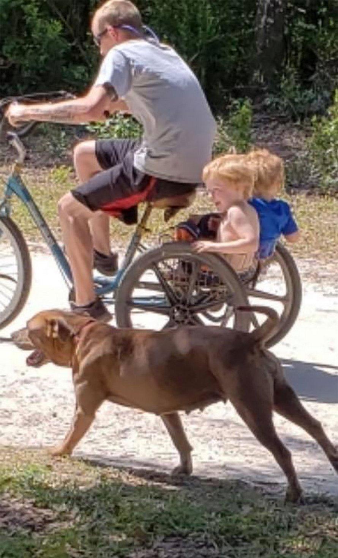 Un jeune enfant autiste disparu a été retrouvé sous la garde des chiens de la famille