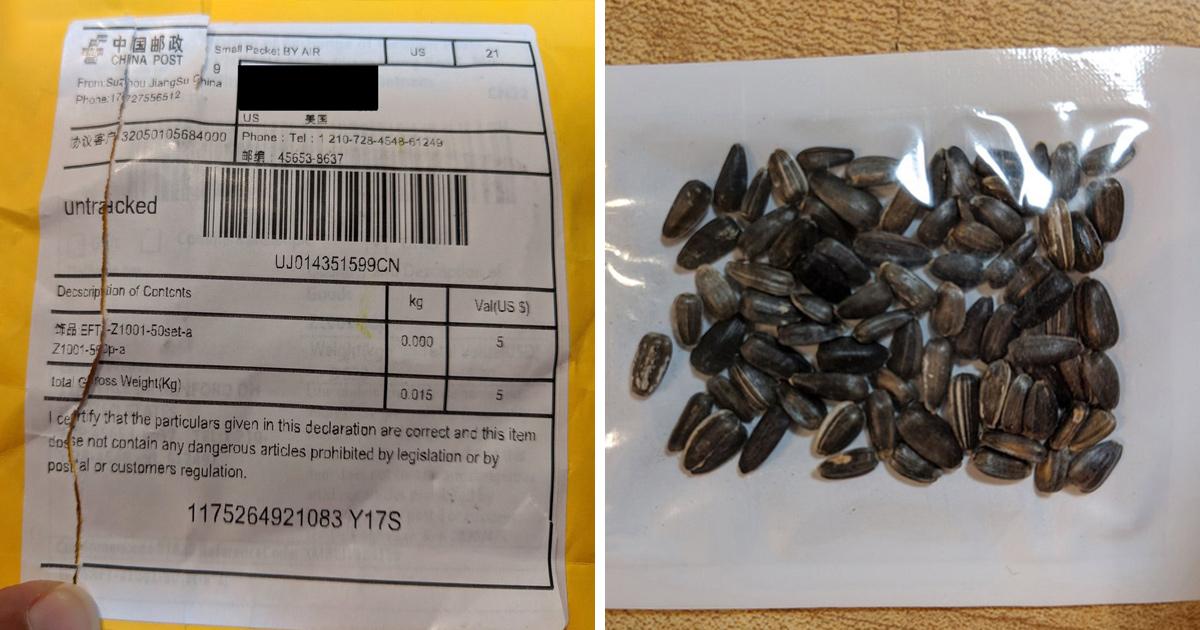 Les autorités avertissent les gens de ne pas planter de mystérieuses graines livrées par la poste