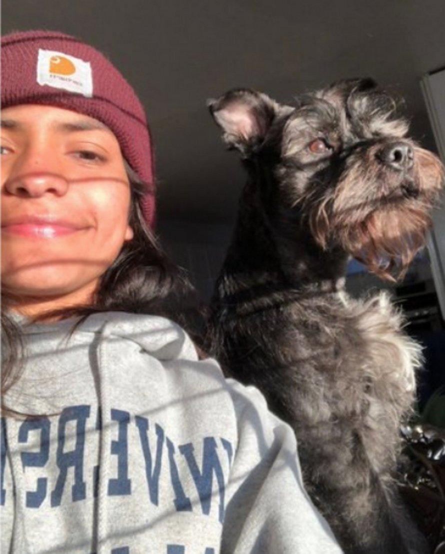 Un chien voit sa propriétaire faire des tractions et décide de la sauver