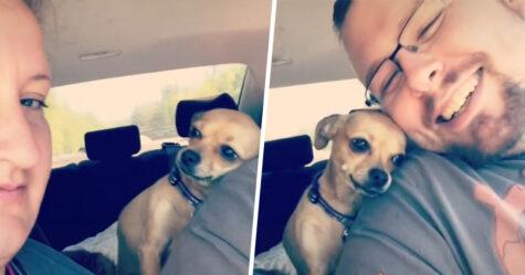 Cette petite chienne n'a pas peur de faire savoir à une femme que son mari lui appartient