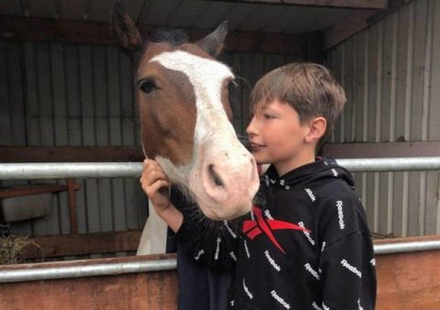 Un garçon saute dans l'eau glacée et risque sa vie pour sauver un cheval de la noyade