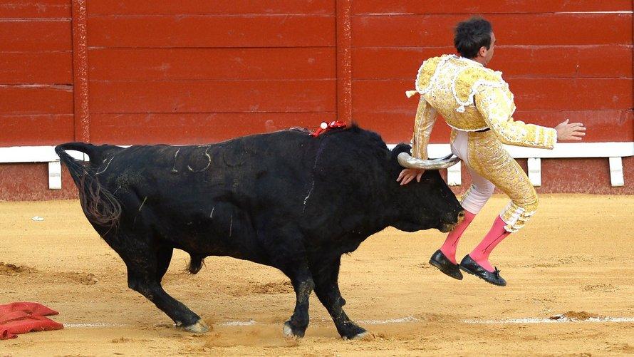 Un matador est encorné dans l'anus et soulevé dans les airs pendant une corrida
