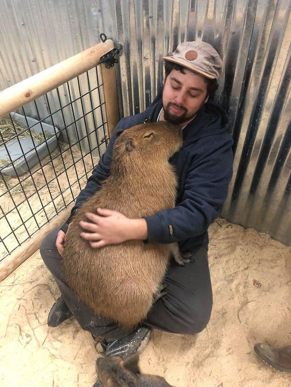 23 photos d'animaux avec des messages rigolos vont te faire sourire