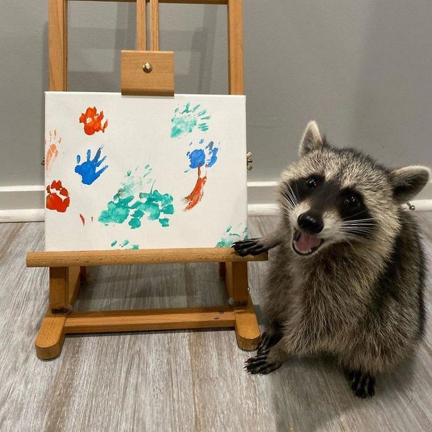 De fiers ratons laveurs artistes posent à côté de leurs peintures et ils ont l'air si heureux