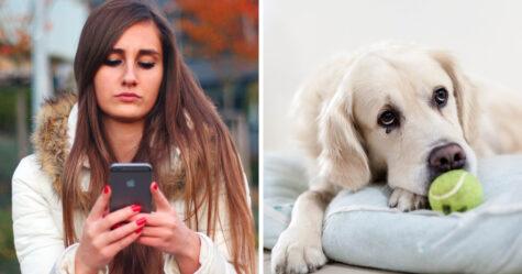 40% des gens abandonneraient leur chien pendant un mois pour garder leur smartphone