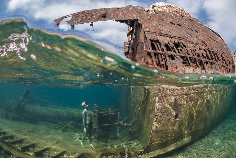 Les 22 plus belles photos sous-marines de 2020 viennent d'être annoncées
