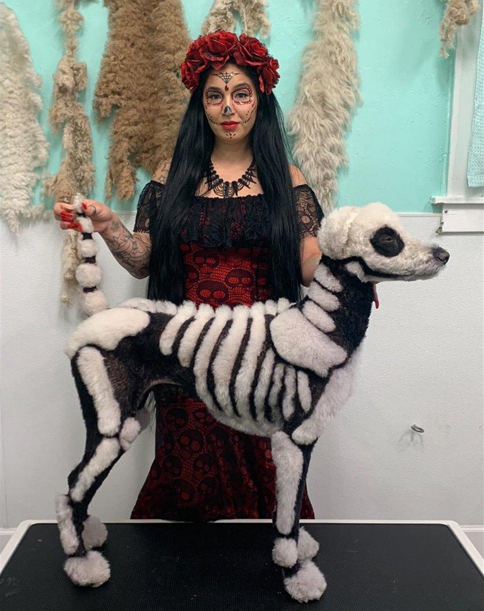 Une femme transforme son caniche en squelette pour Halloween, mais beaucoup de gens sont en colère