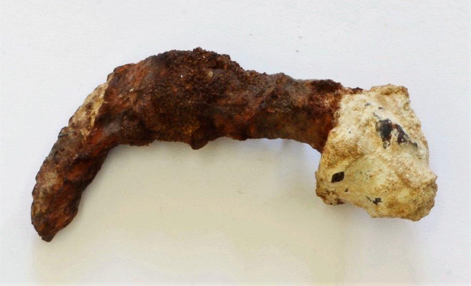 Des scientifiques découvrent des preuves qui pourraient lier des clous anciens à la «crucifixion de Jésus»