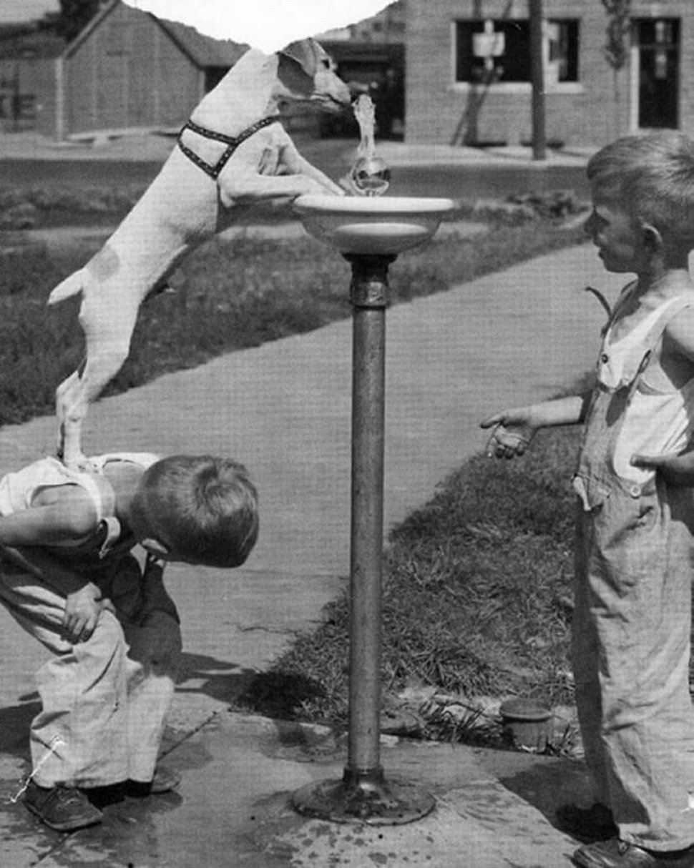 22 photos qui montrent la vie des enfants avant les smartphones, quand ils s'amusaient vraiment