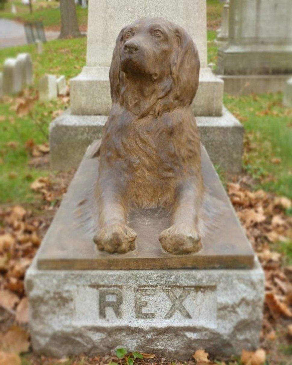 Des gens laissent des bâtons sur la tombe centenaire de ce chien