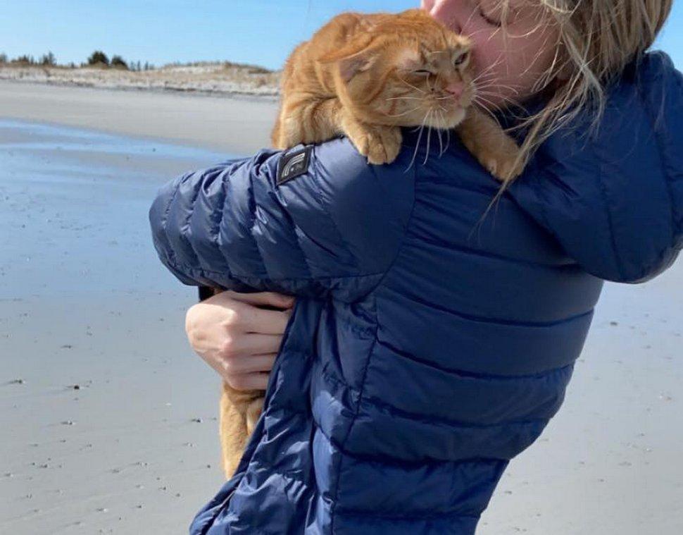 Ce chat est allé à la plage pour la première fois et ses expressions en disent long