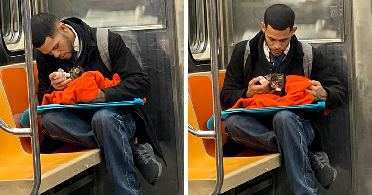 Un homme vu avec un minuscule chaton dans le métro redonne confiance aux gens en l'humanité ! Par Janvier Doyon Homme-avec-chaton-metro-gillian-rogers-00