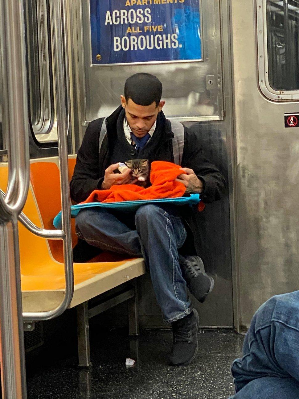 Un homme vu avec un minuscule chaton dans le métro redonne confiance aux gens en l'humanité ! Par Janvier Doyon Homme-avec-chaton-metro-gillian-rogers-001