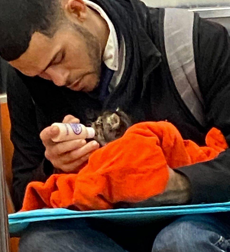 Un homme vu avec un minuscule chaton dans le métro redonne confiance aux gens en l'humanité ! Par Janvier Doyon Homme-avec-chaton-metro-gillian-rogers-004