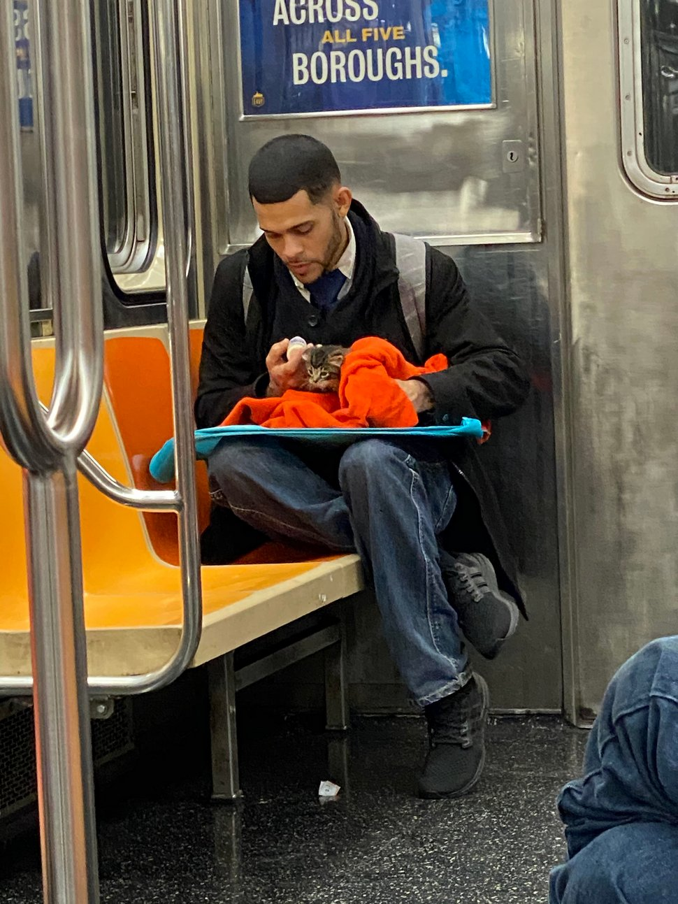 Un homme vu avec un minuscule chaton dans le métro redonne confiance aux gens en l'humanité ! Par Janvier Doyon Homme-avec-chaton-metro-gillian-rogers-005