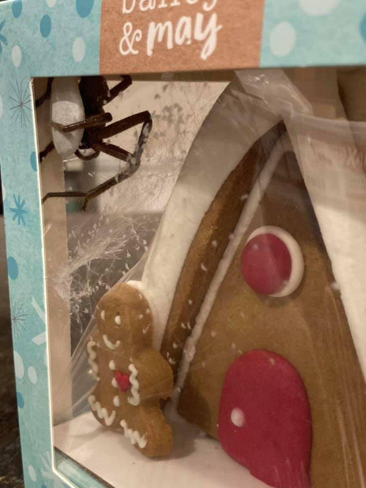 Une femme trouve une énorme araignée qui vit dans sa maison de pain d'épices de Noël