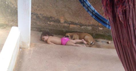 Des parents trouvent leur fille faisant la sieste dehors avec ses chiens
