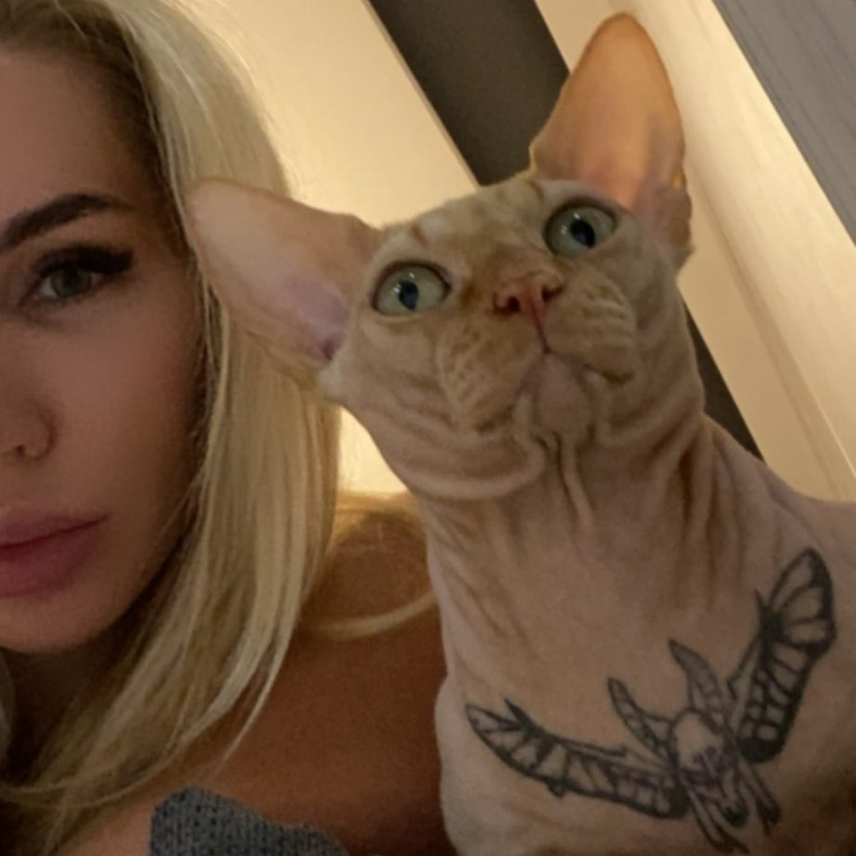 Cette femme a tatoué son chat et les gens viennent juste de découvrir qui elle est