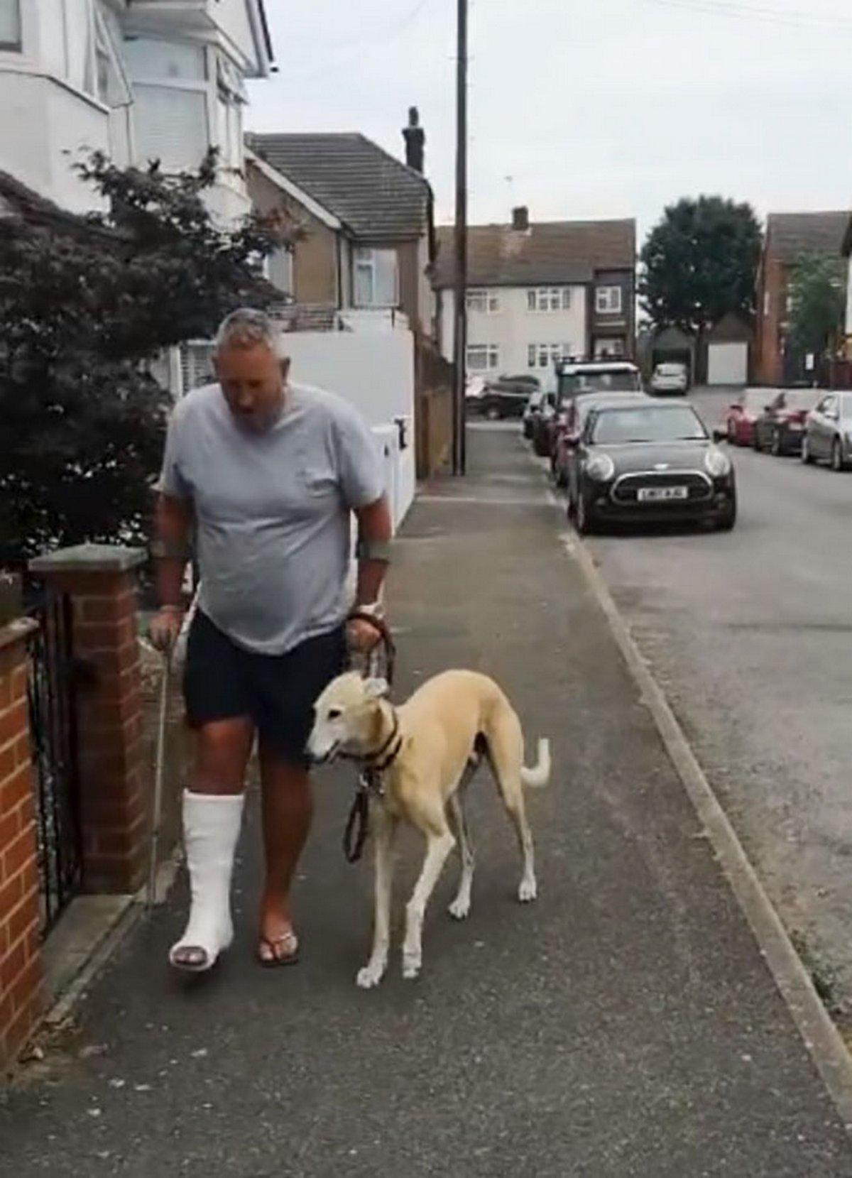 Le propriétaire d'un chien blessé dépense 340€ en frais de vétérinaire pour son chien boiteux, mais découvre qu'il l'imite simplement par sympathie