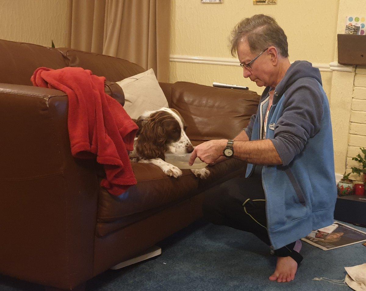 Ce papa dort en bas sur le canapé avec son chien âgé pour lui tenir compagnie