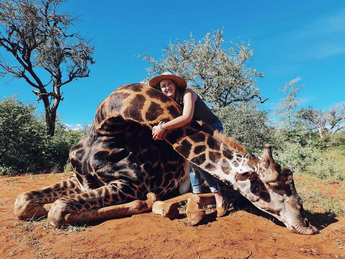 Une chasseuse de trophées se défend d'avoir dépensé 1700€ pour tirer sur une girafe et poser avec son coeur