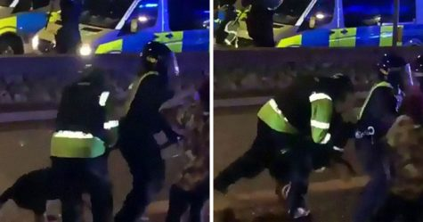 «Il a fait ce qu'on lui a appris» : un chien policier mord un policier qui brutalise un manifestant