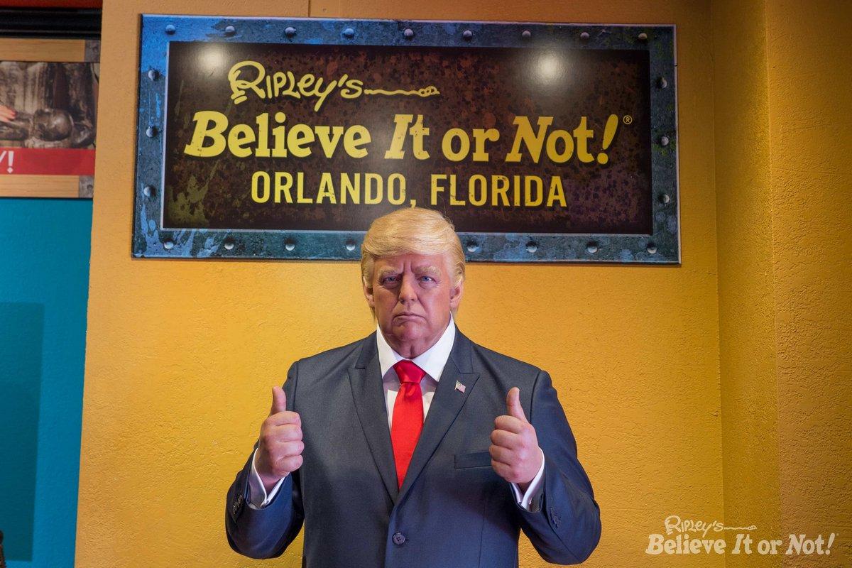 La statue de cire de Donald Trump a été retirée d'un musée parce que les gens n'arrêtaient pas de la frapper au visage