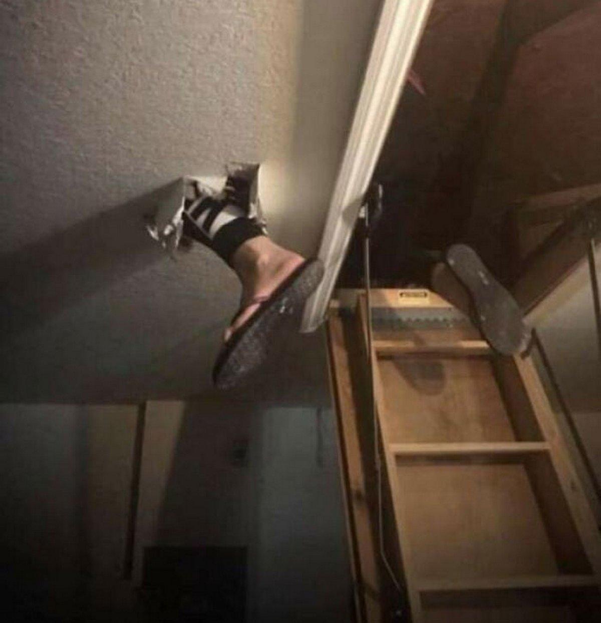 22 fois où des propriétaires de maison ont vu leur journée gâchée