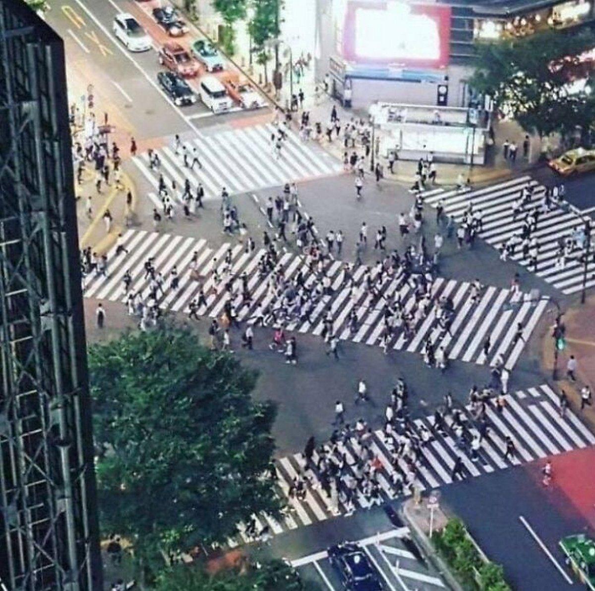 Ces faits prouvent que le Japon n'est pas un pays comme les autres