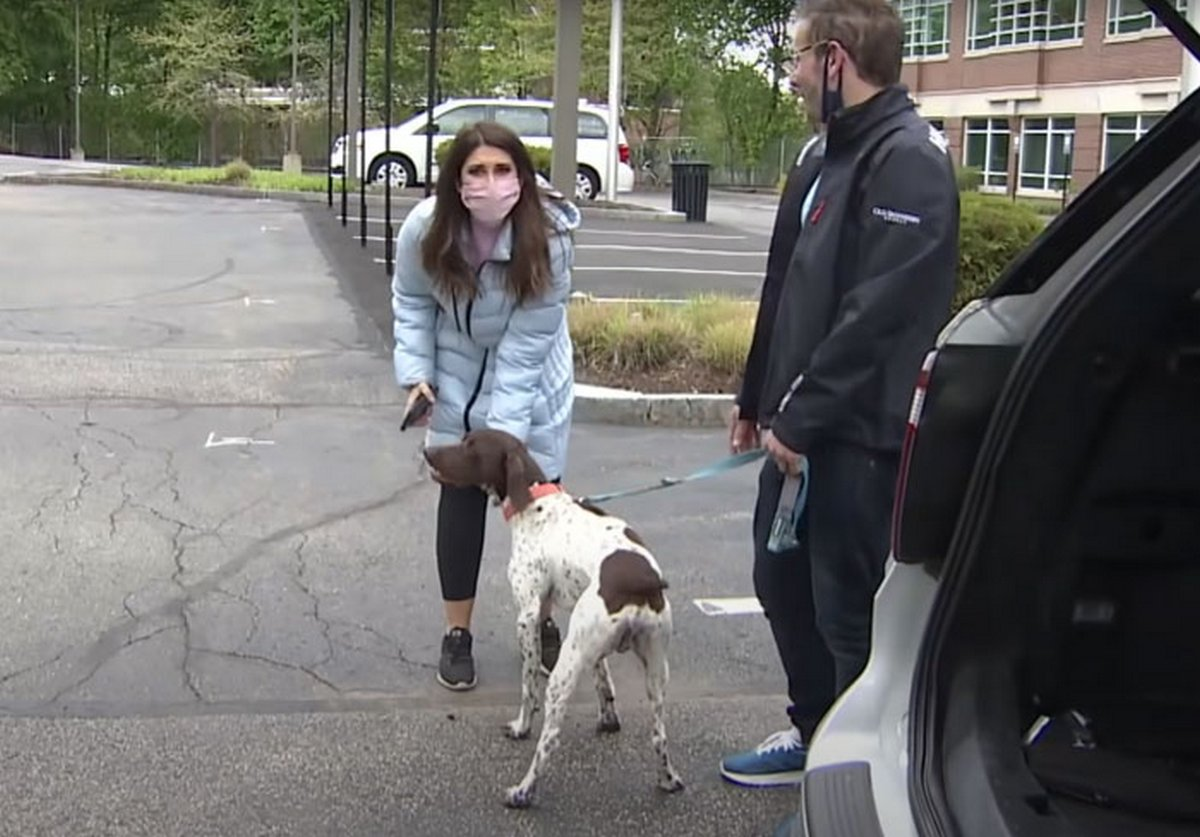 Un journaliste enquêtant sur un chiot volé voit le même chien dans la rue et se rend compte qu'un ravisseur le promène