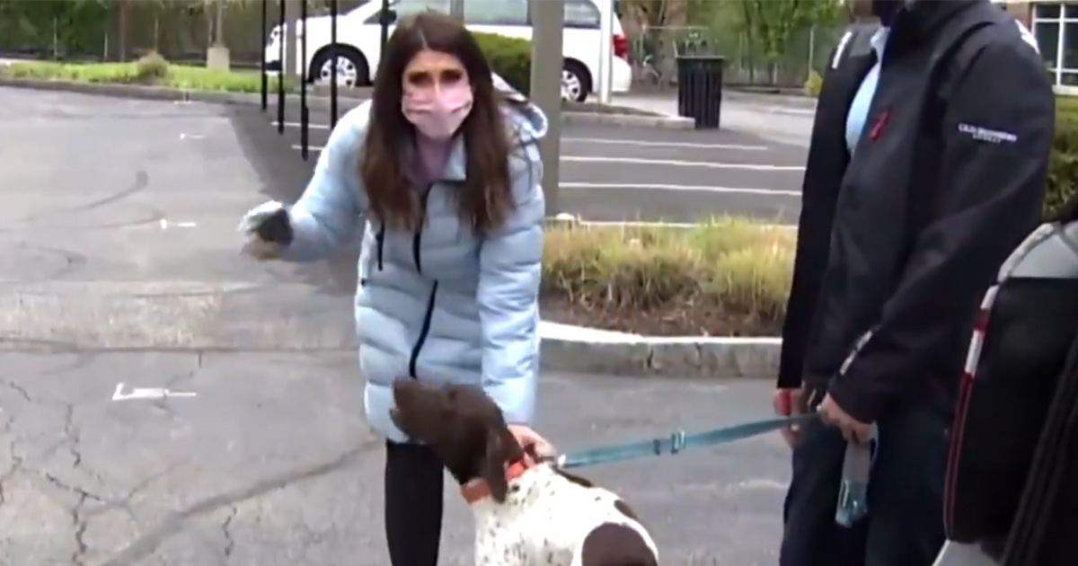 Une reporter qui enquête sur un chiot volé voit le même chien dans la rue et réalise que c'est le kidnappeur qui le promène