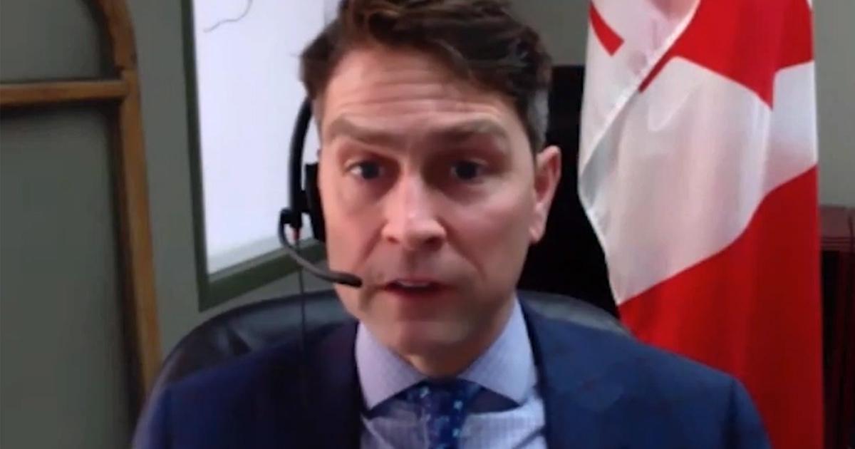 Un député démissionne après avoir uriné «dans une tasse à café», nu, lors d'une réunion Zoom