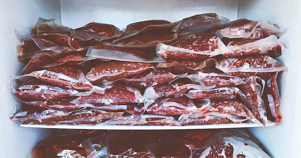 Un père oblige son fils végétarien à se charger de la viande pourrie après qu'il a débranché le congélateur pour faire pourrir leur viande