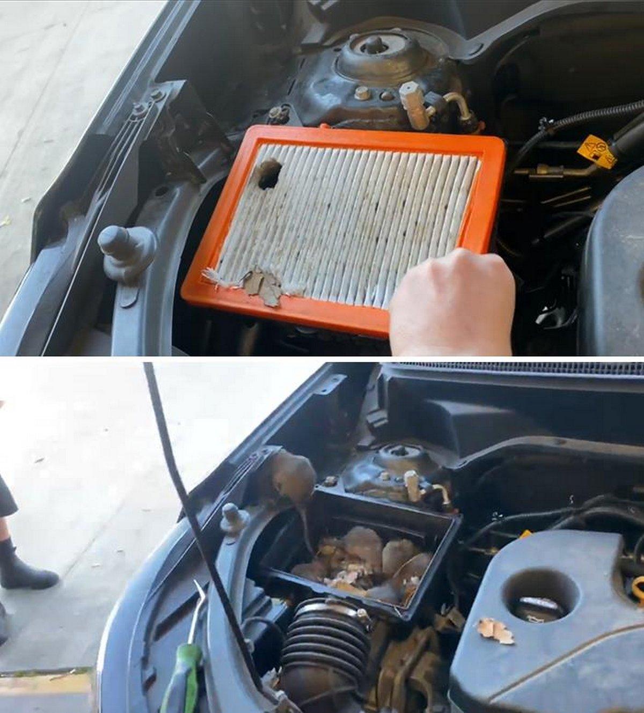 Ces mécaniciens automobiles ont pris des photos de ce à quoi ils avaient affaire pour que les autres les croient