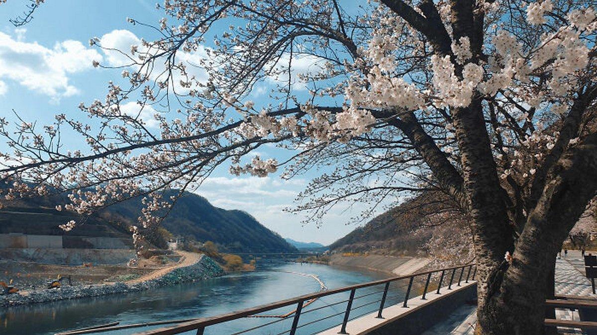 La Corée du Sud est un monde complètement différent et ces photos le démontrent parfaitement